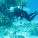 Daily Diving in Hurghada